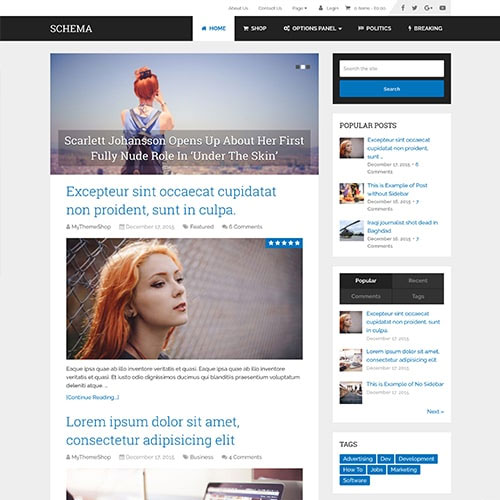 Photo of Schema WordPress Theme