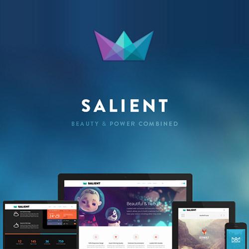Photo of Salient – Responsive Multi-Purpose Theme