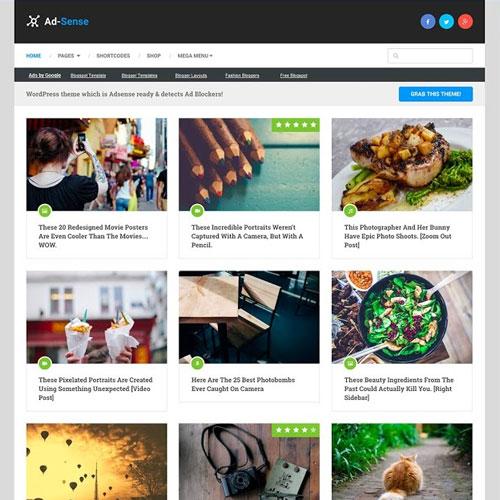Photo of Ad-Sense WordPress Theme